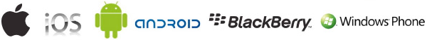 Gestionale Cross Platform per IOS Android BalckBerry e Windows Phone
